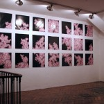 Site specific print installation