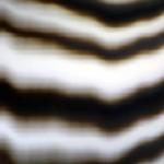 Post-Digital Mirror, 2013 (detail)