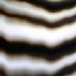 Lenticular print on aluminum composite, 2.20 × 1.10 m